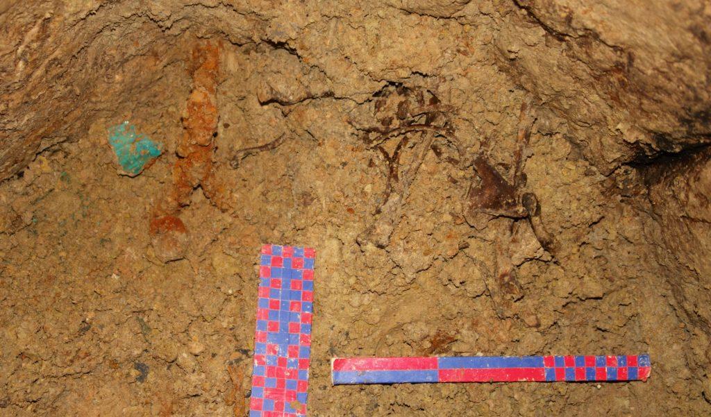 Kości dziecka na dnie studni w Taghyah © Esmail Szarahi