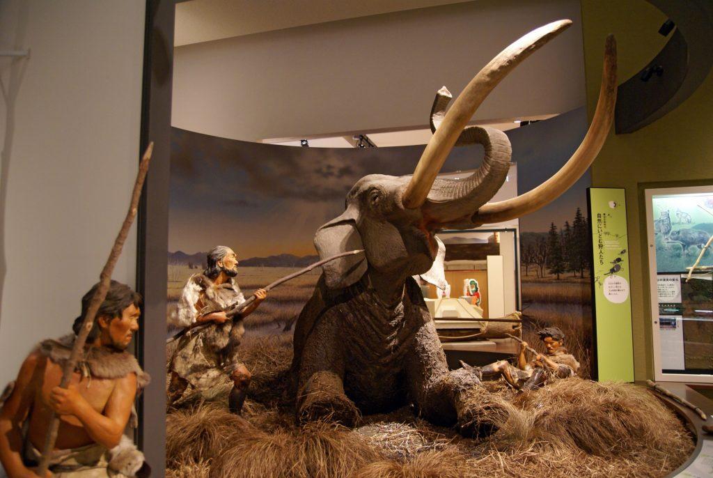 Polowanie na mamuta, scena z prefekturalnego Muzeum Archeologicnzego w Hyogo fot. 663highland (opublikowano na licencji CC BY-SA 3.0, via Wikimedia Commons