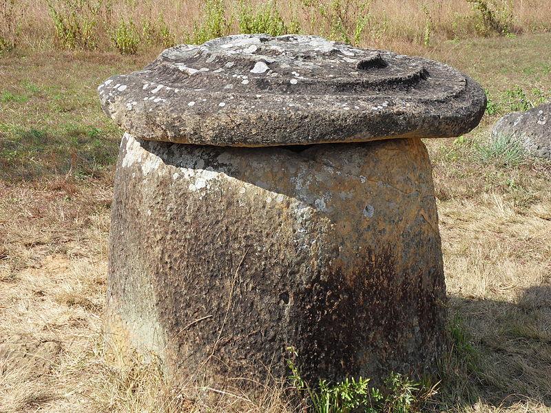 Dzban z Równiny Dzbanów fot. Chaoborus (opublikowano na licencji CC BY-SA 3.0 via Wikimedia Commons)