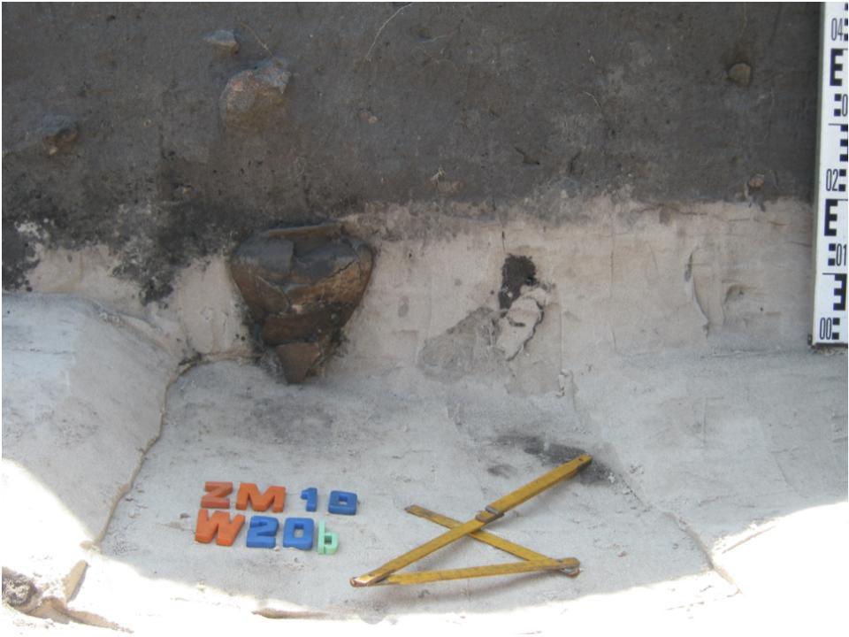 Żmijowiska, stanowisko 10. Naczynie ceramiczne wkopane pod obiekt – osada północna, badania w 2016 roku © A. Kacprzak