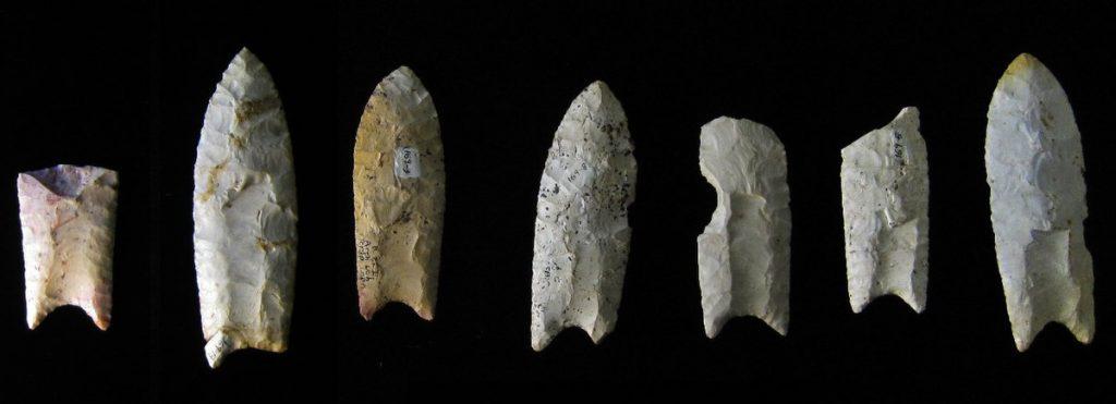 Narzędzia Clovis, uważane przez wiele lat za wytwory pierwszej kultury archeologicznej w obu Amerykach  fot. B. Whittaker, opublikowano na licencji CC BY-SA 3.0, via Wikimedia Commons
